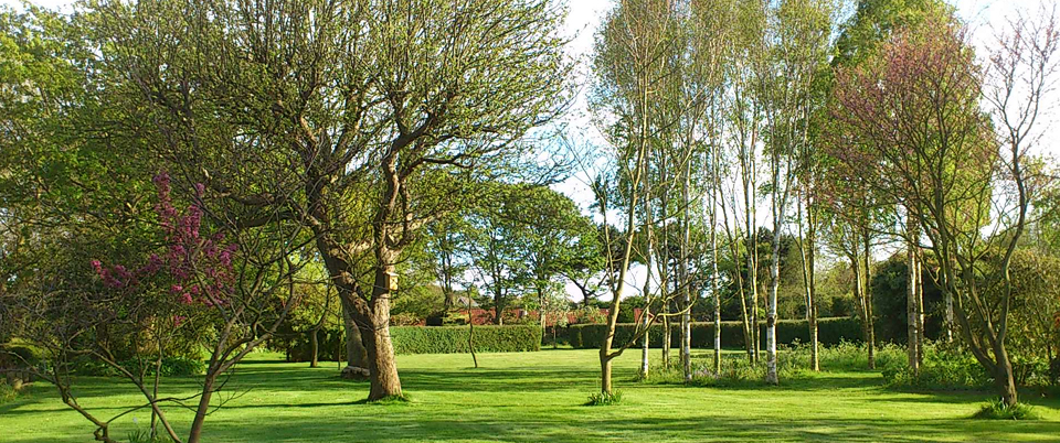 The gardens at Abbey Farm Cottages, Beeston, Norfolk